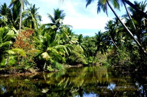 Sungai ini konon pada jaman kerajaan Samudra dulu pernah ada lalu lintas kapal-kapal pedagang. Sumber: http://hananan.com/2012/09/16/makam-makam-kuno-kerajaan-samudra/