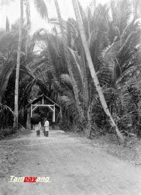 Jalan Raya Passo, dengan Jembatan pake rumah + pohon sagu kiri kanan