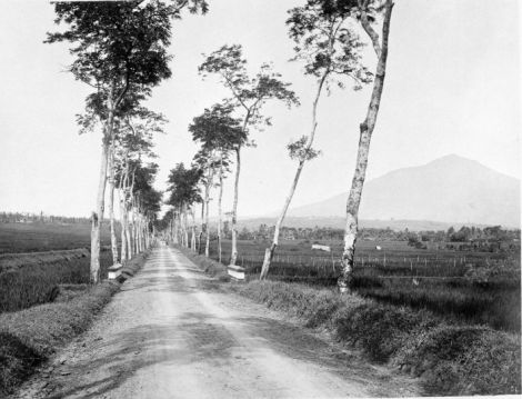Sebuah jalan menuju Kabupaten Tasikmalaya, sementara Gunung Galunggung terlihat di kejauhan - 1920-1940. Sumber foto: Coll. Tropenmuseum, Netherlands