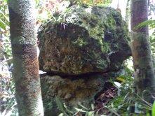 Tiang batu yang diduga bekas menara istana