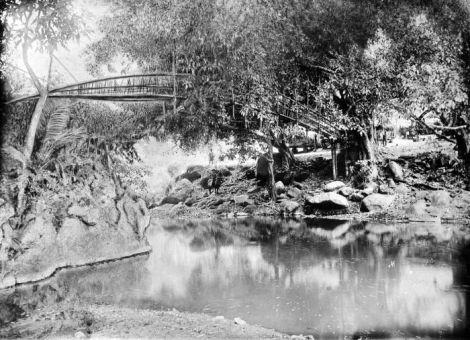 Jembatan Bambu Yang menghubungkan Ndona dan Ende. Sumber foto: Coll. Tropenmuseum, Netherlands