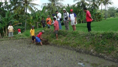 Aktivitas penelitian bekas Kerajaan Blambangan di Desa Macan Putih, Kecamatan Kabat, Banyuwangi, Jawa Timur. Tempo/Ika Ningtyas