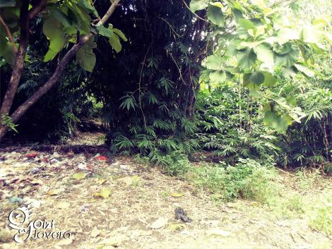 situs bekas Siti Inggil