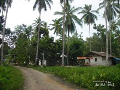 horale - jalan desa menuju pantai horale