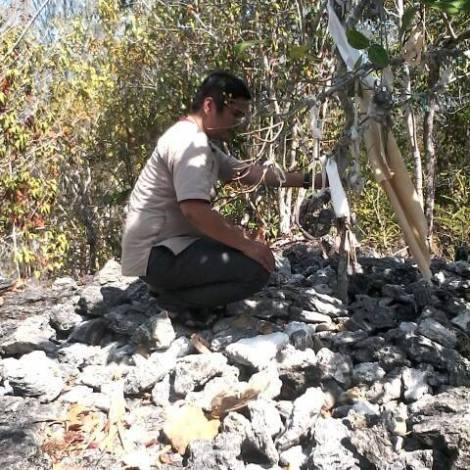 Makam Mombeeti (Mokole Wawolesea) - Sumber: anakia kasupute, fb