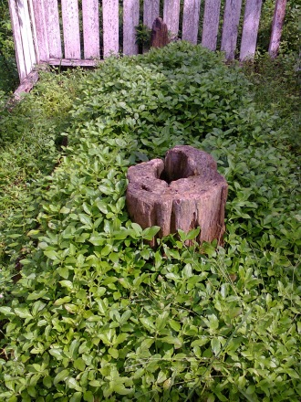 Kuburan Raja sengalau