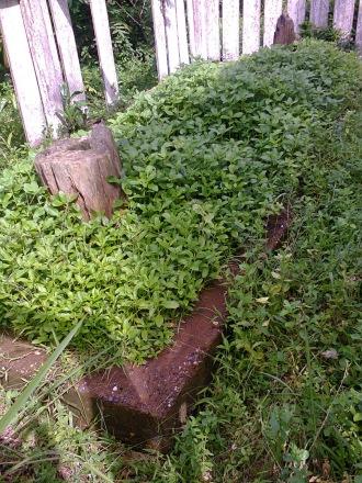 Kuburan Raja sengalau(Kuburan lipat tigo)